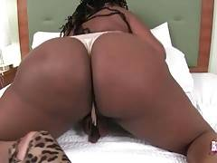 Chocolate tranny Honey Bunny is shaking her meaty booty.